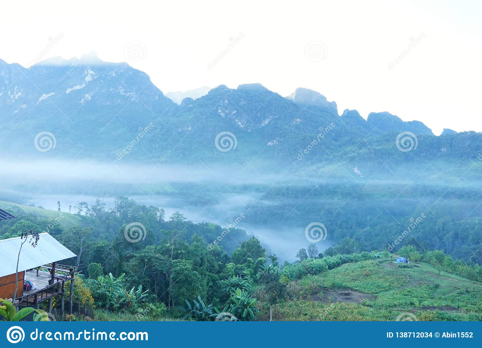 Fog in the morning at Doi Chiang Dao, Thailand, abundance evergreen forest and foggy