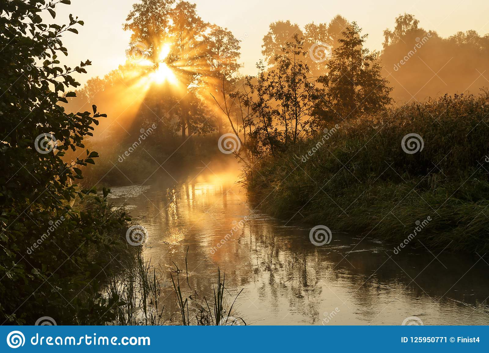 Fog over the river with the rising sun.