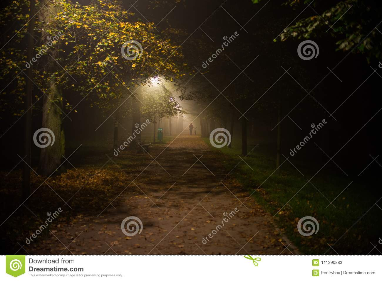 Fog in the park, night, soft focus, high iso,