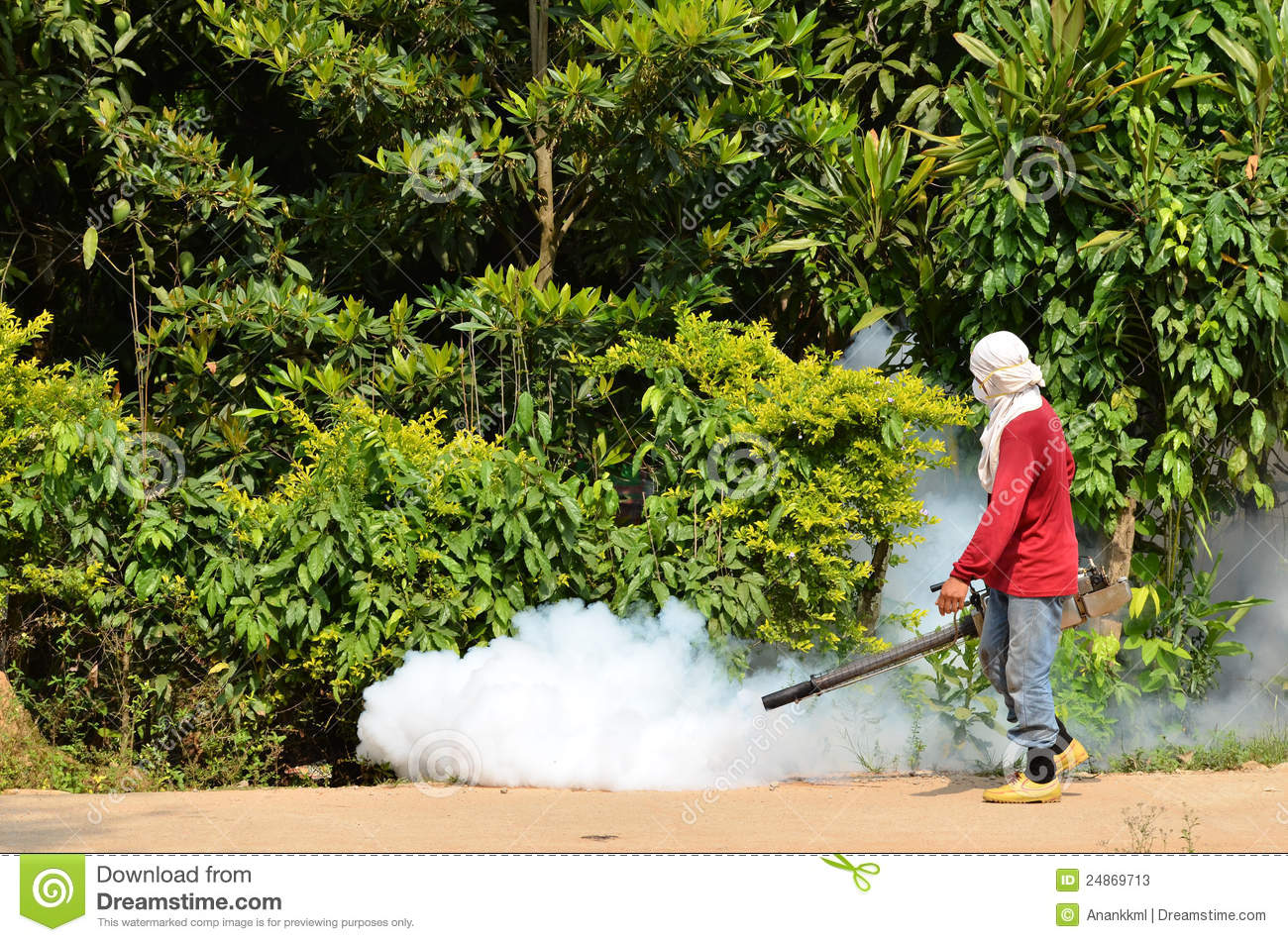 prevent spread dengue fever essay Prevent dengue home / health authorities are on the alert for dengue fever and have issued some advice to mitigate the spread of the potentially deadly disease.