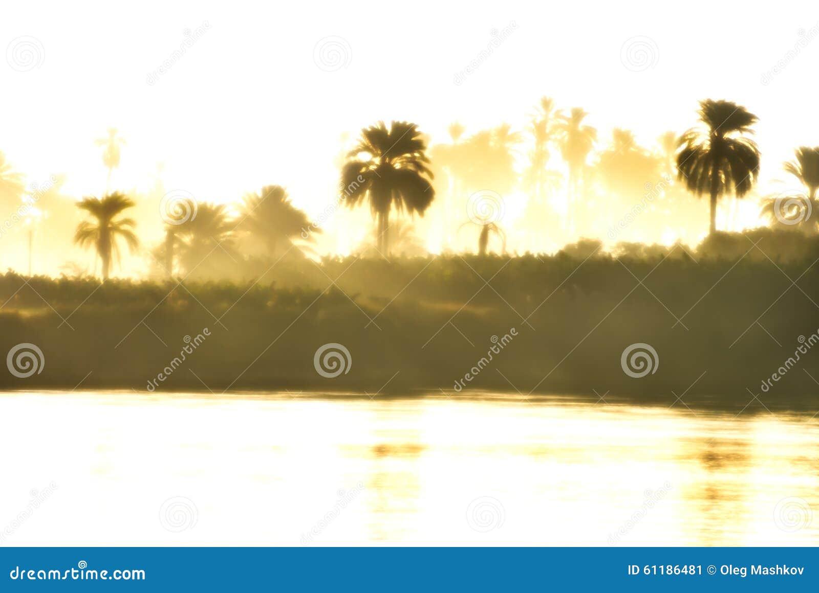 Foggy morning on the Nile