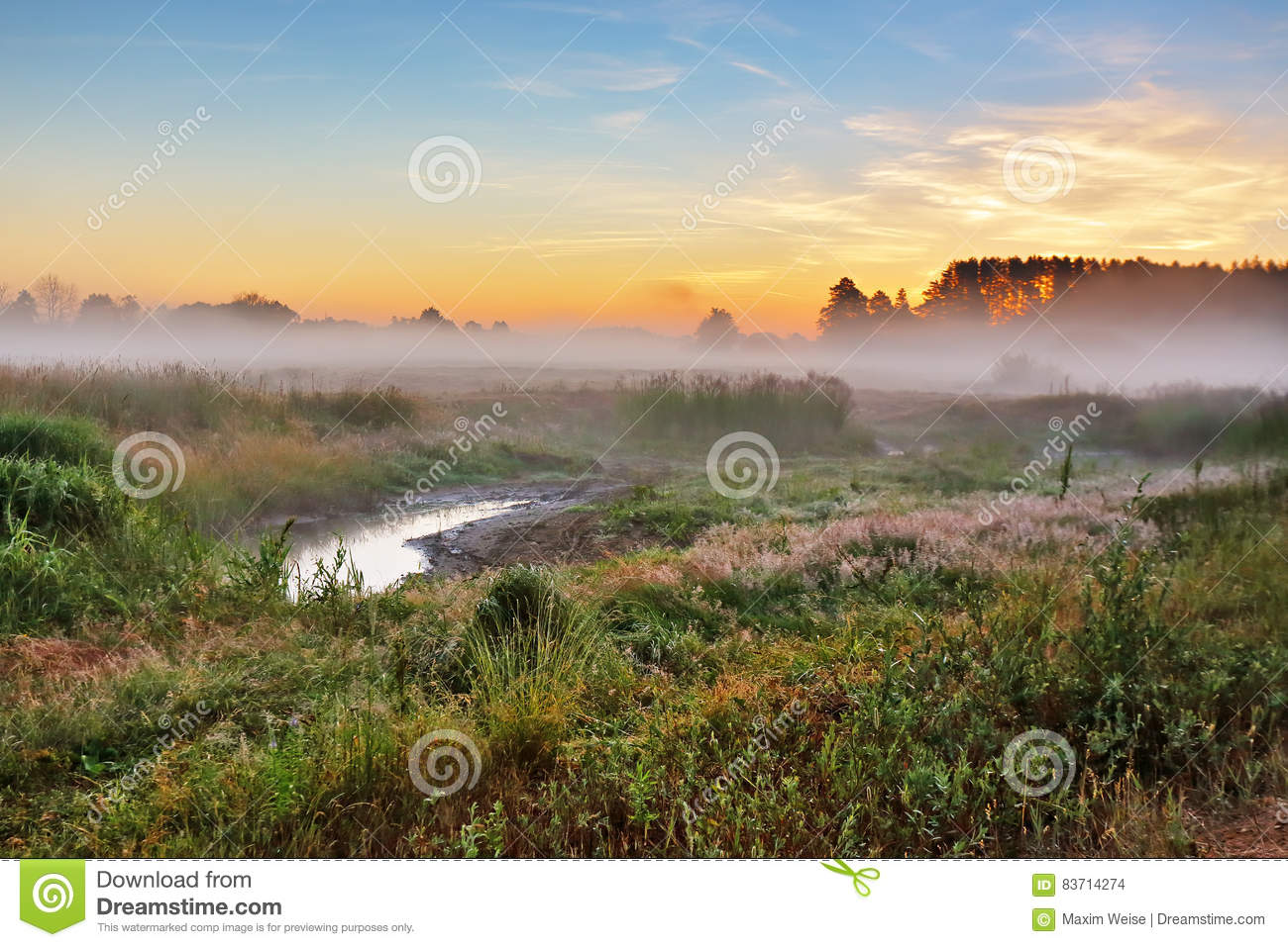 Foggy Summer Meadow In The Morning. Misty Dawn Panorama. Stock Photo