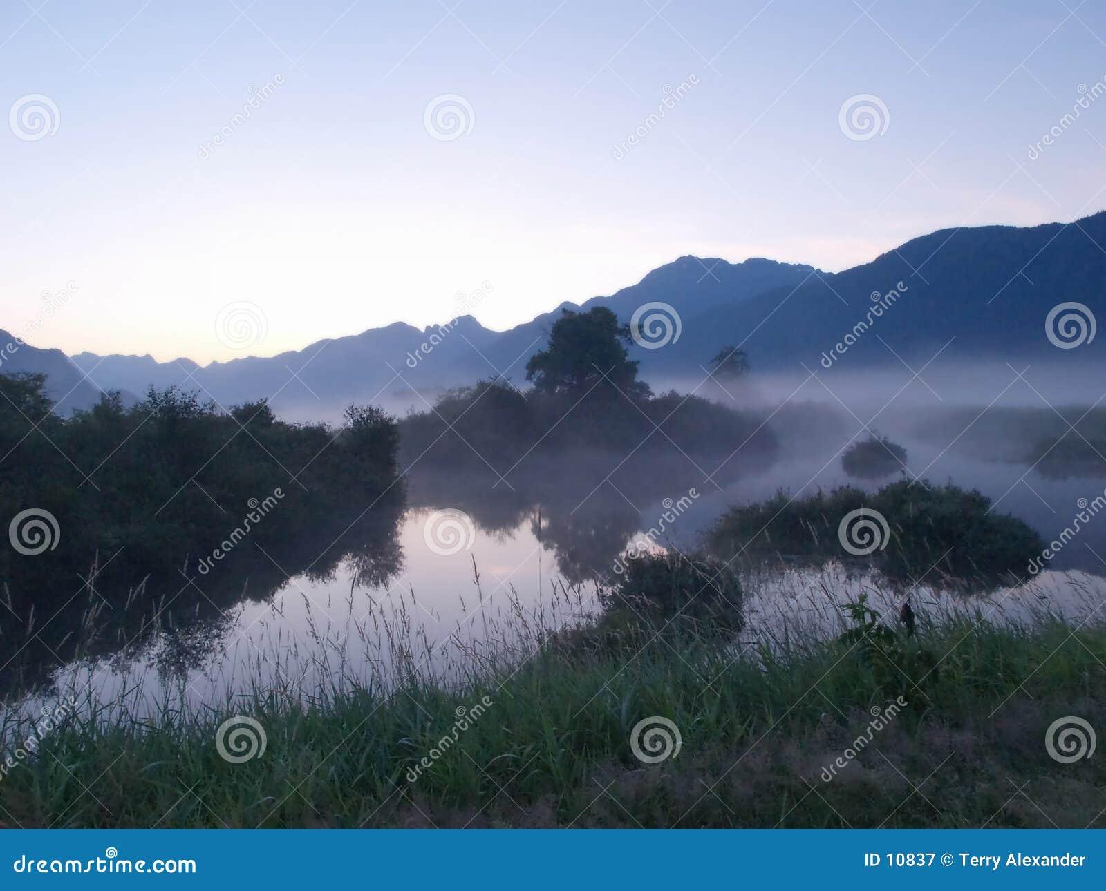 Foggy sun rise