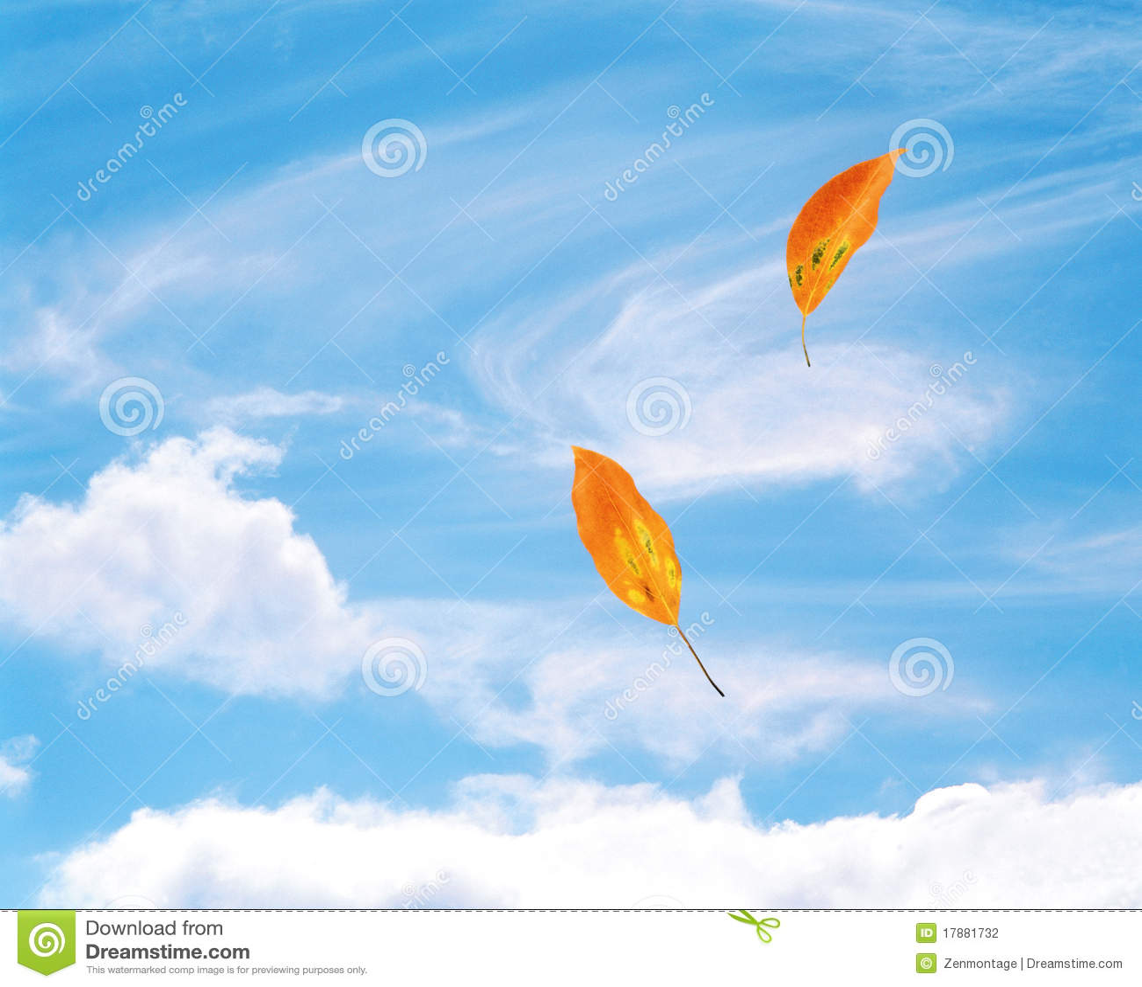 Fogli che saltano nel vento