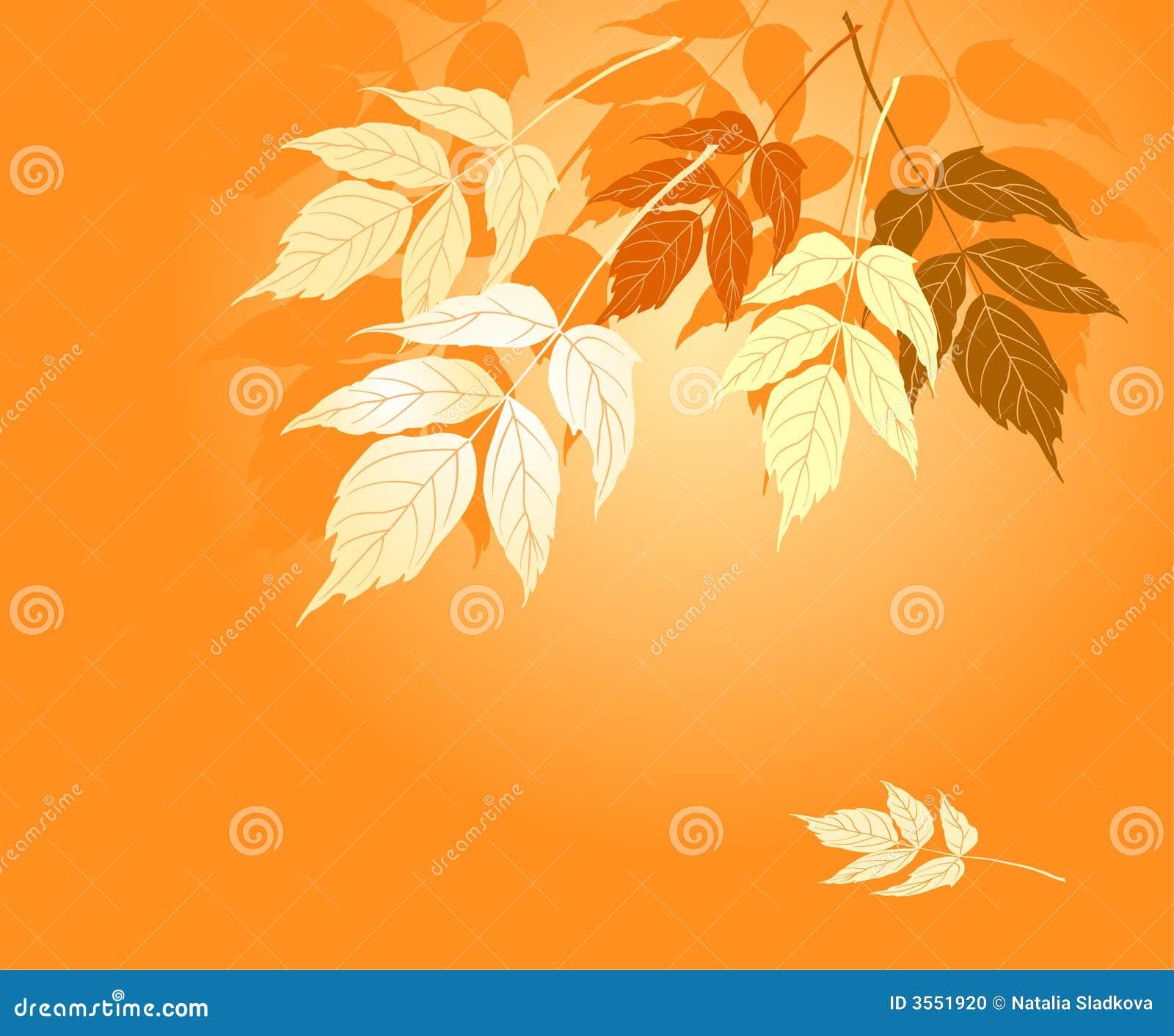 Fogli di colore giallo di autunno