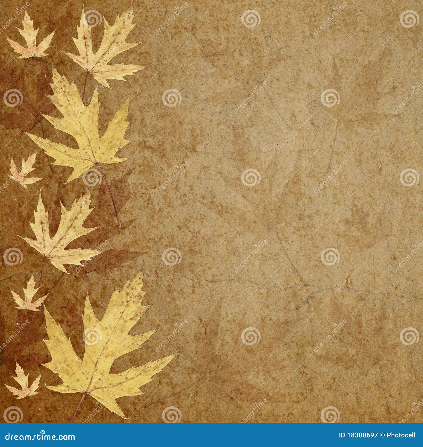 Fogli di colore giallo su pergamena illustrazione di stock - Caduta fogli di colore stampabili ...