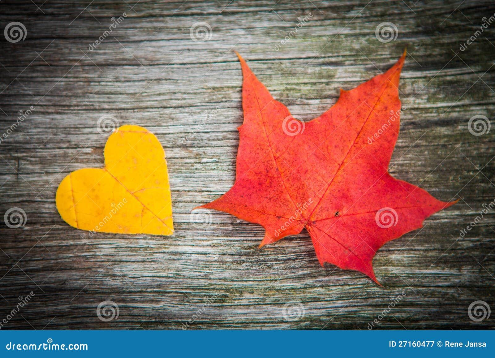 Fogli e cuore di autunno