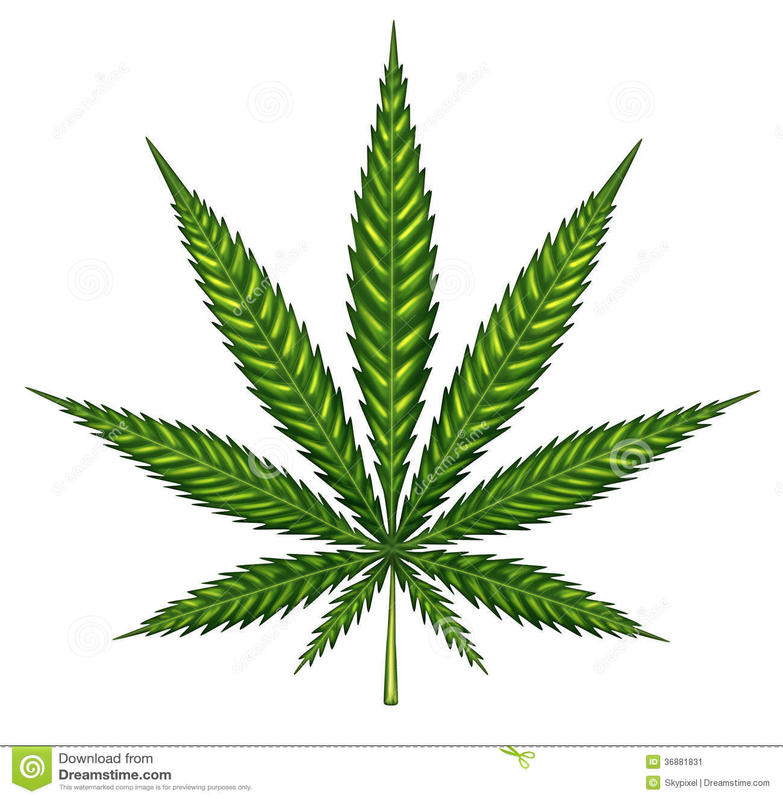 Download Foglia Della Marijuana Isolata Illustrazione di Stock - Illustrazione di singolo, pianta: 36881831