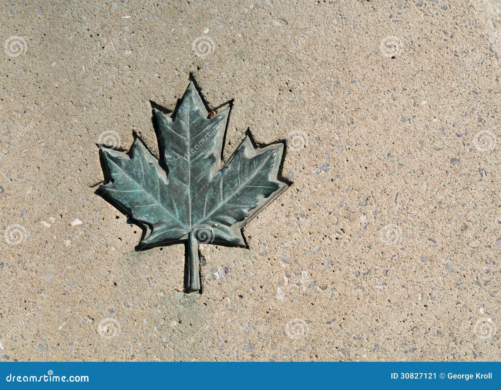 Foglia di acero del Canada