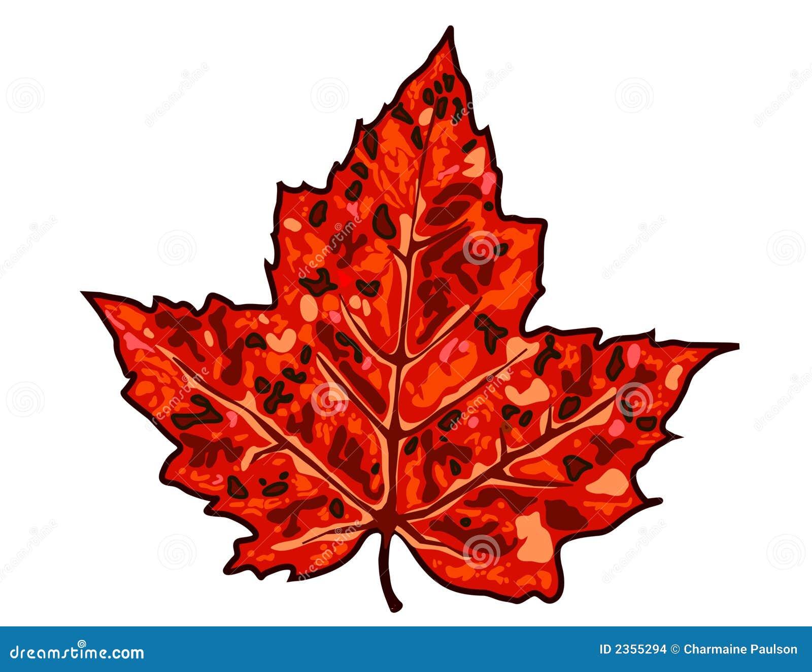 Foglia di acero di autunno illustrazione vettoriale for Foglia acero