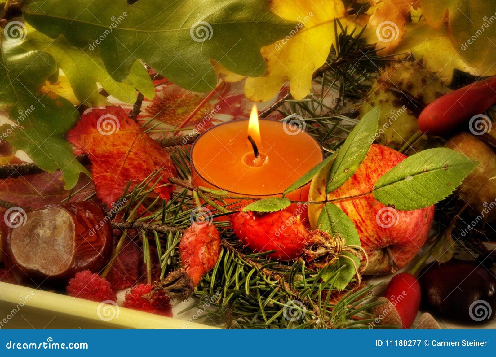 Fogliame d autunno della candela