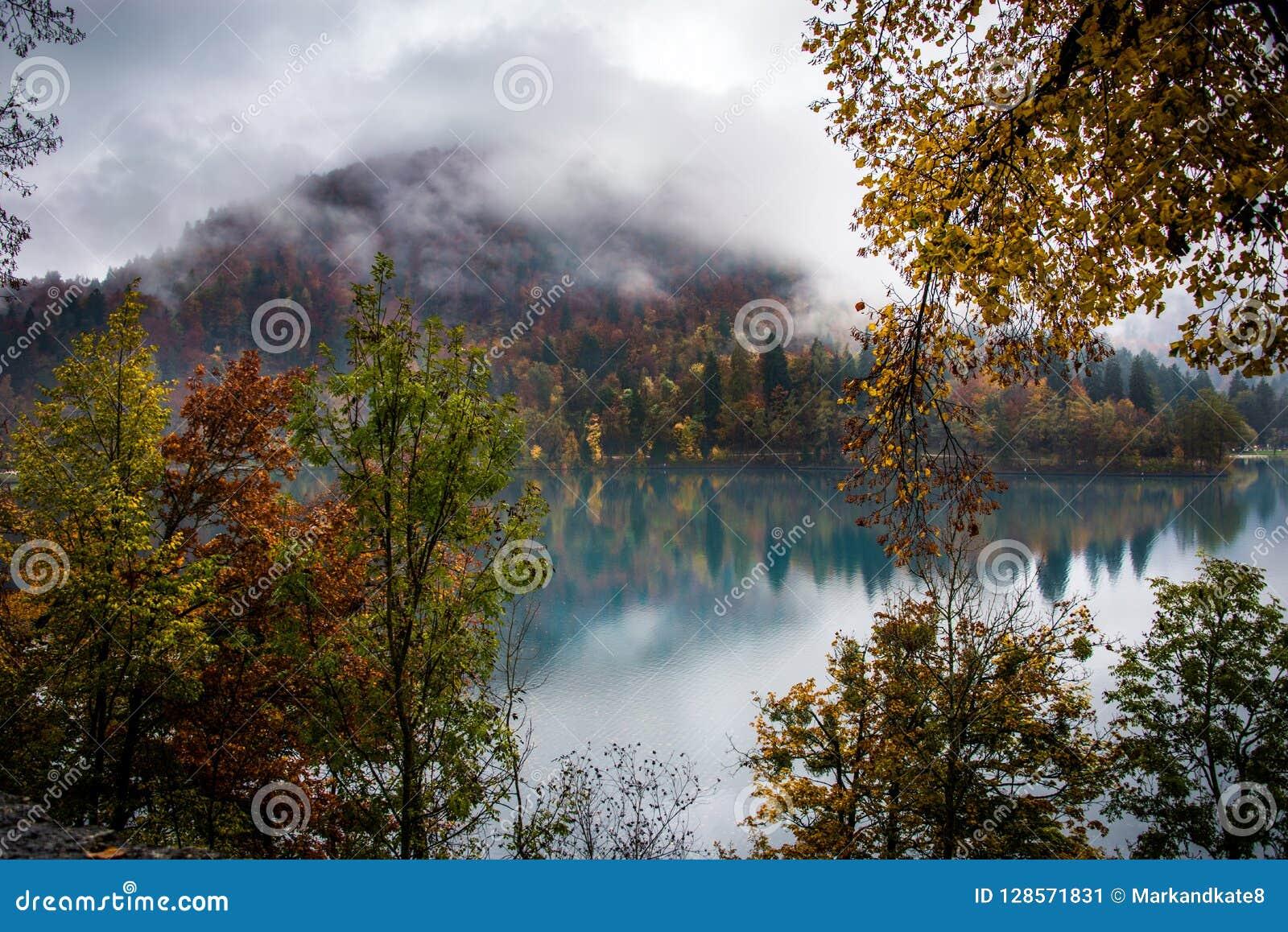 Fogliame di autunno sul lago sanguinato