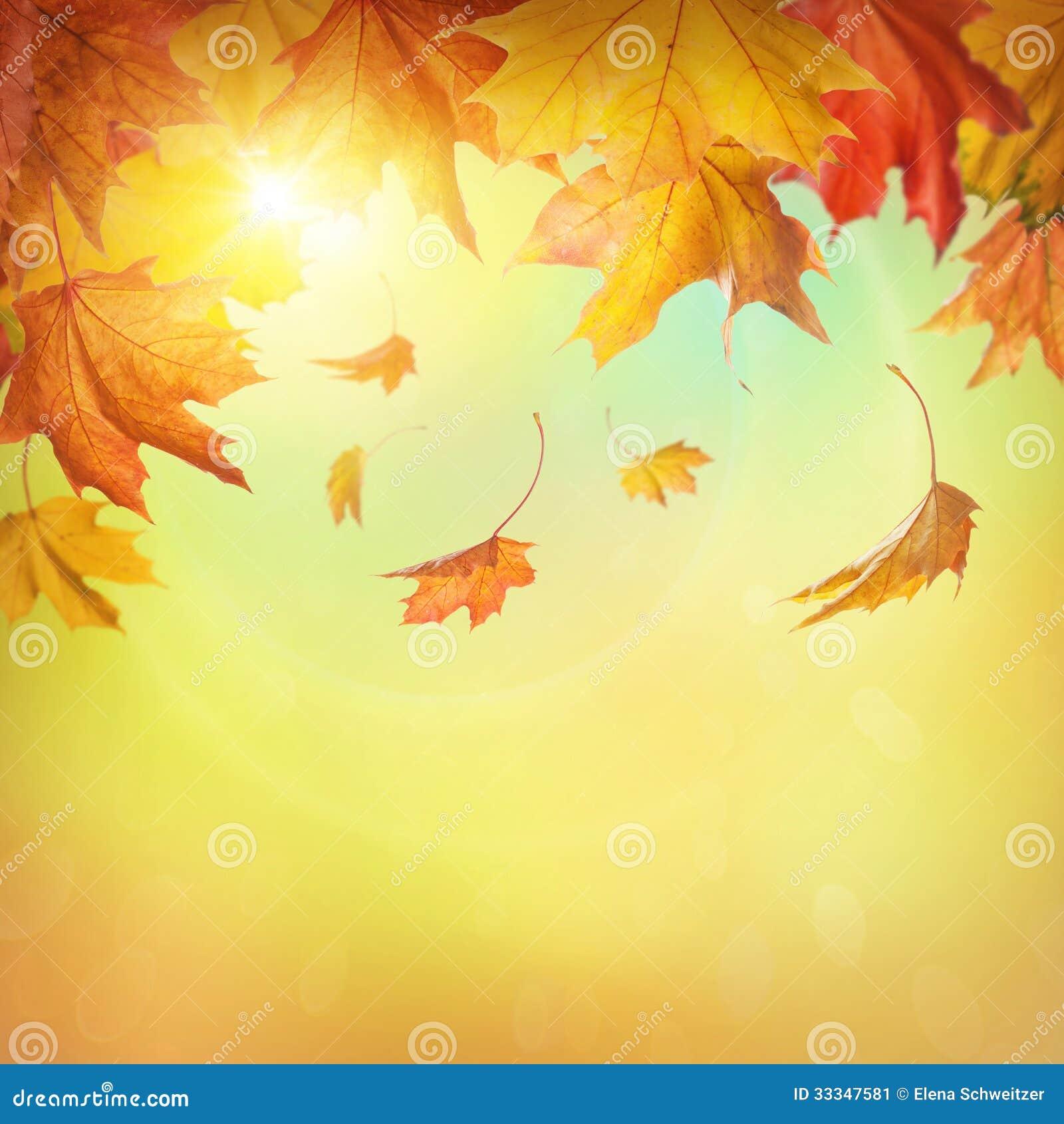 Foglie cadenti di autunno