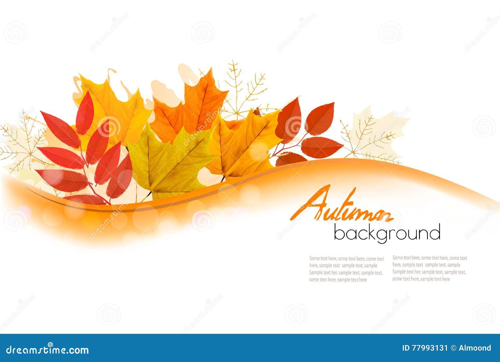 Foglie di Autumn Nature Background With Colorful