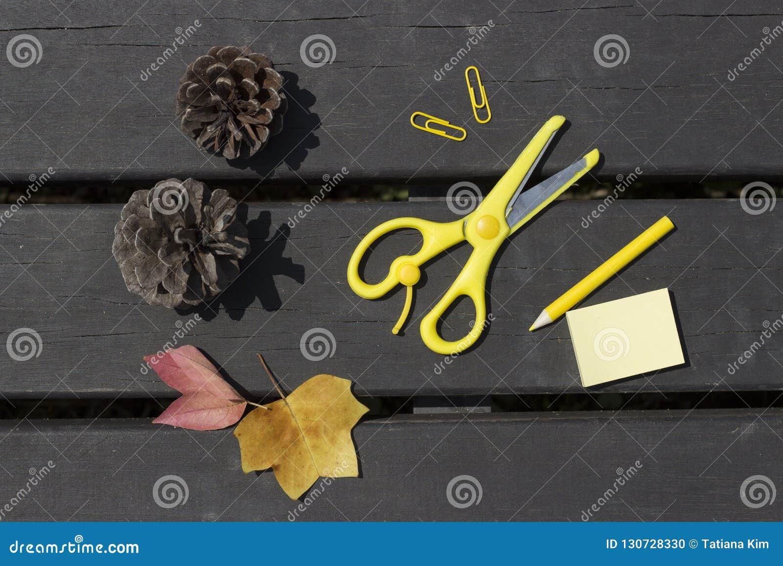 Foglie di autunno, forbici, matita, graffette su un fondo di legno, concetto della scuola