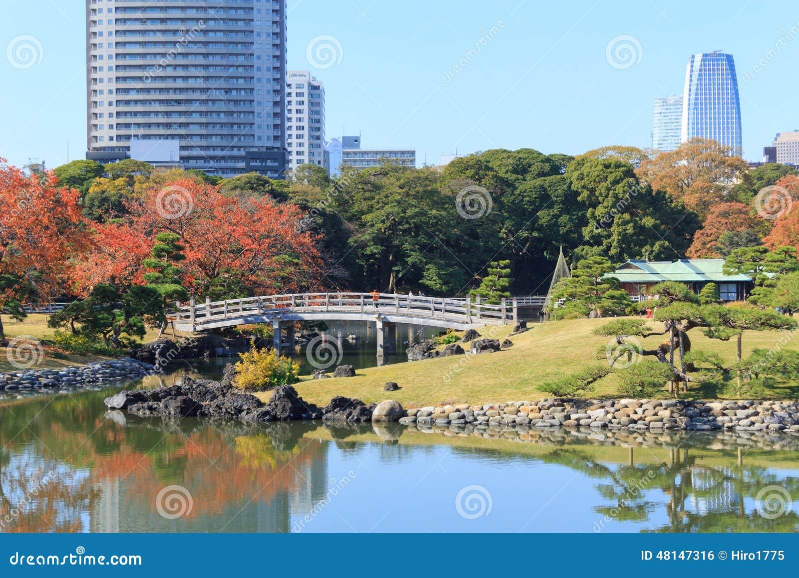 foglie di autunno nei giardini di hamarikyu tokyo