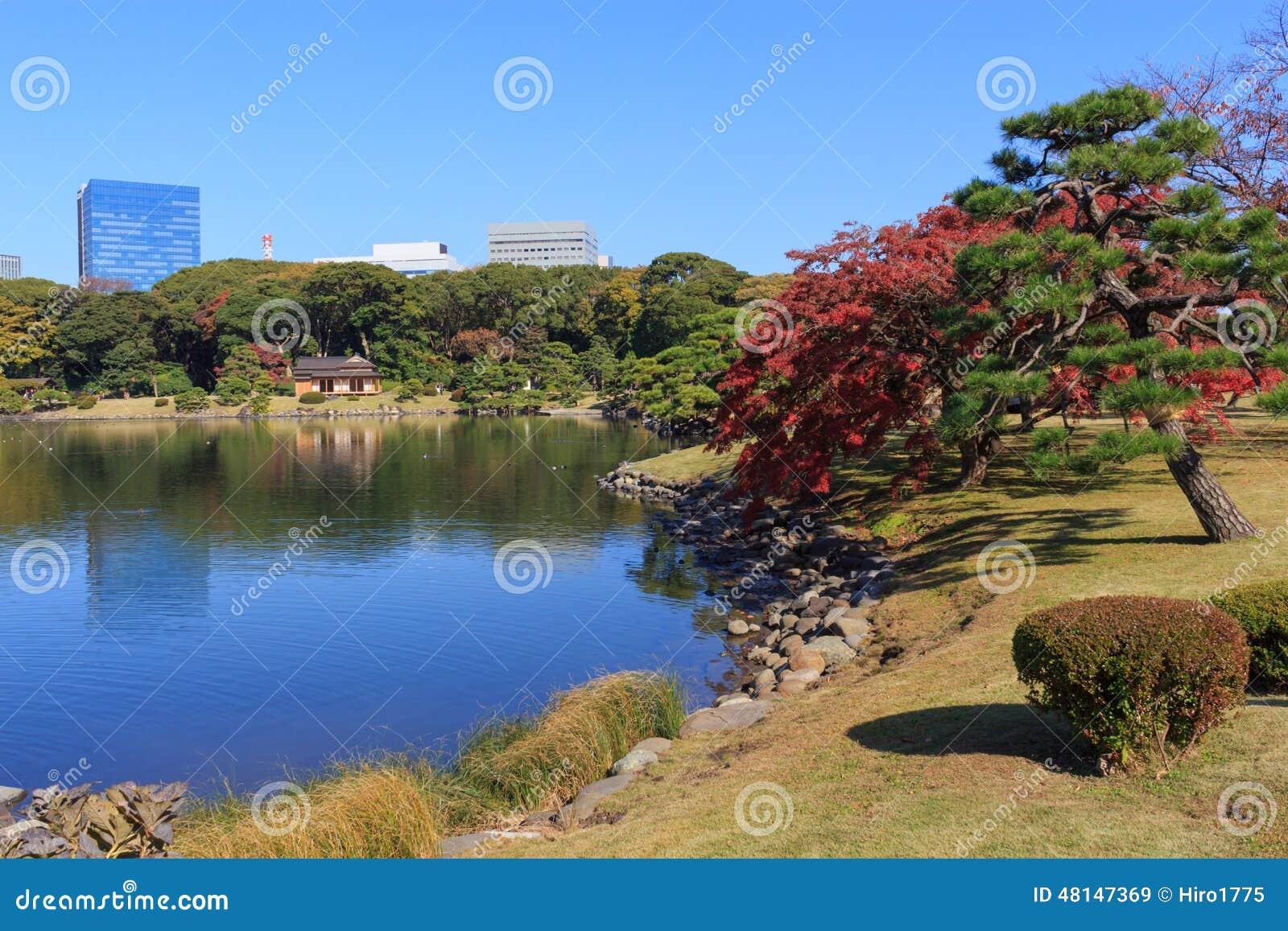 Foglie di autunno nei giardini di hamarikyu tokyo for Laghetti nei giardini