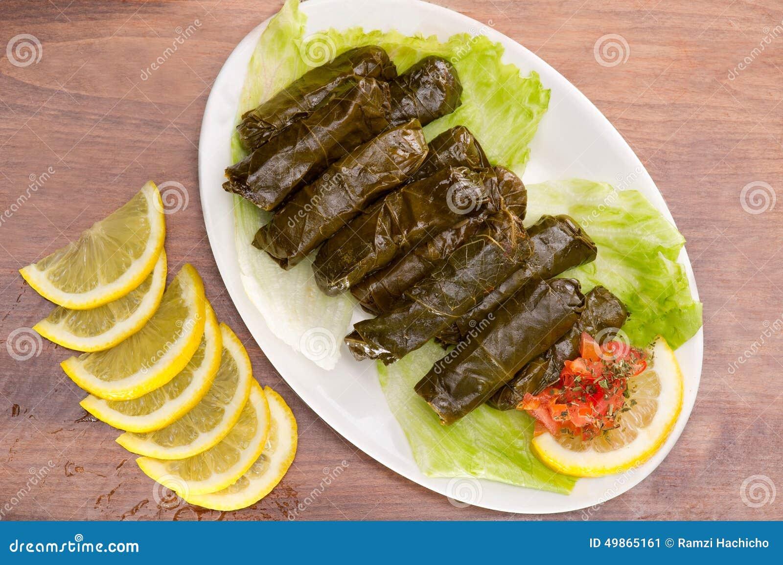 Foglie di vite farcite cucina libanese immagine stock for Cucina libanese