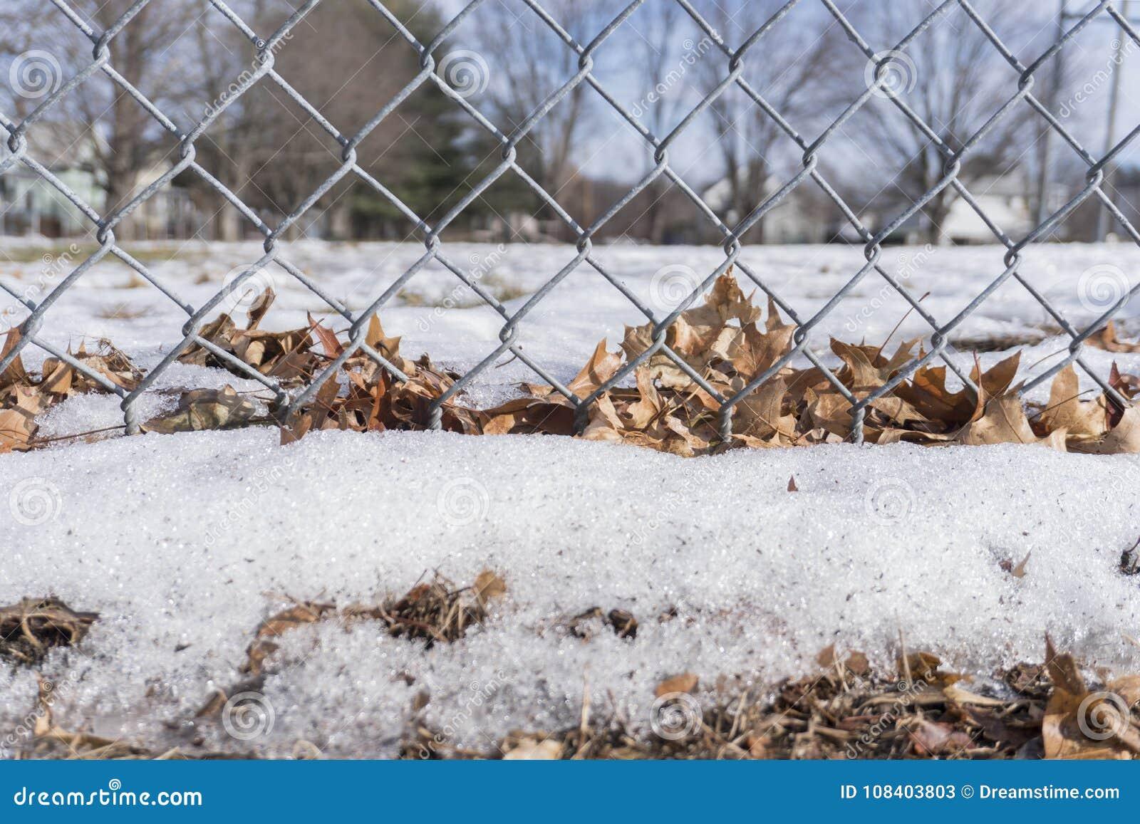 Foglie e neve delle patatine fritte attaccate ad un recinto