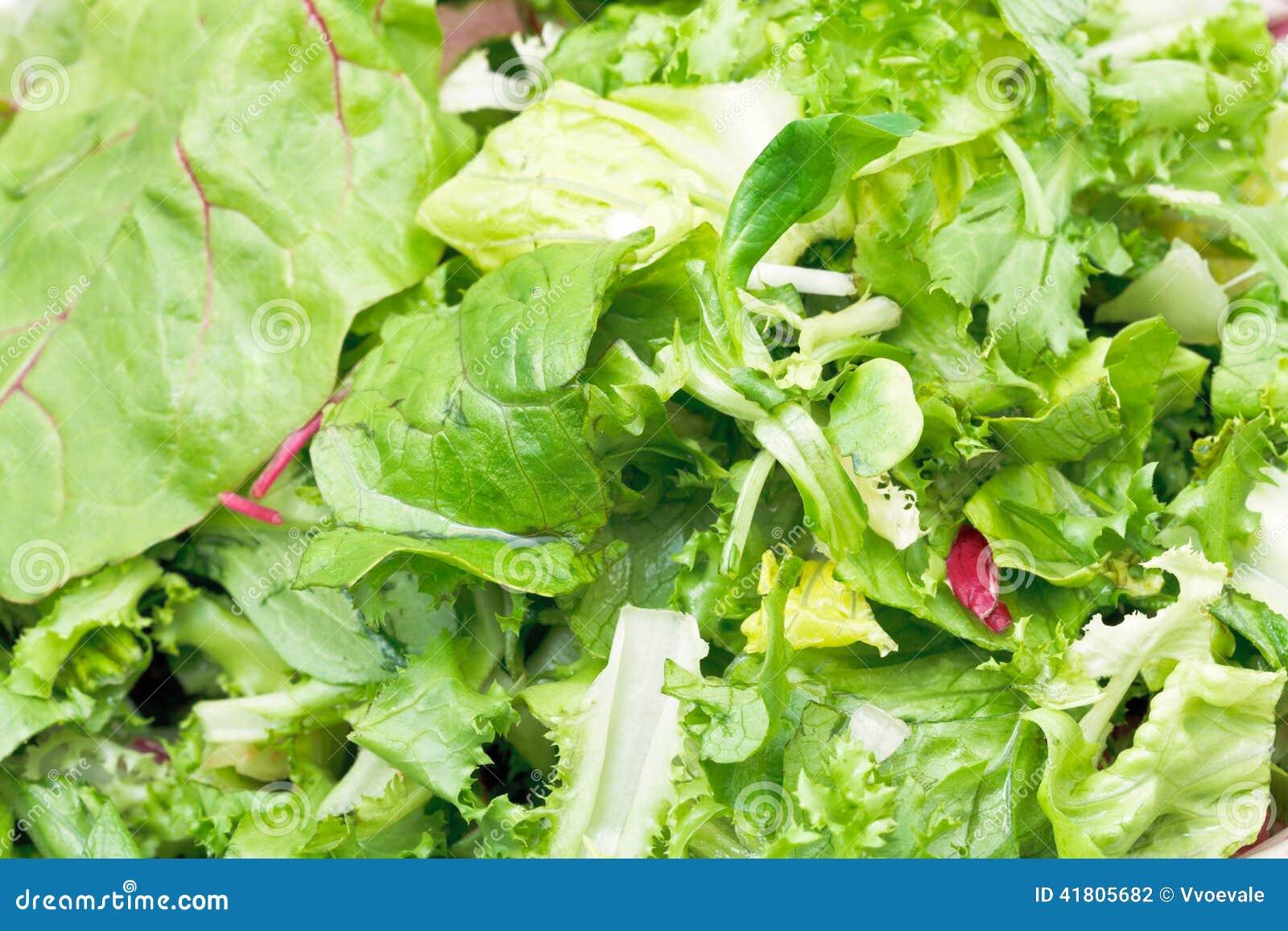 Foglie verdi in aperitivo italiano fresco della lattuga