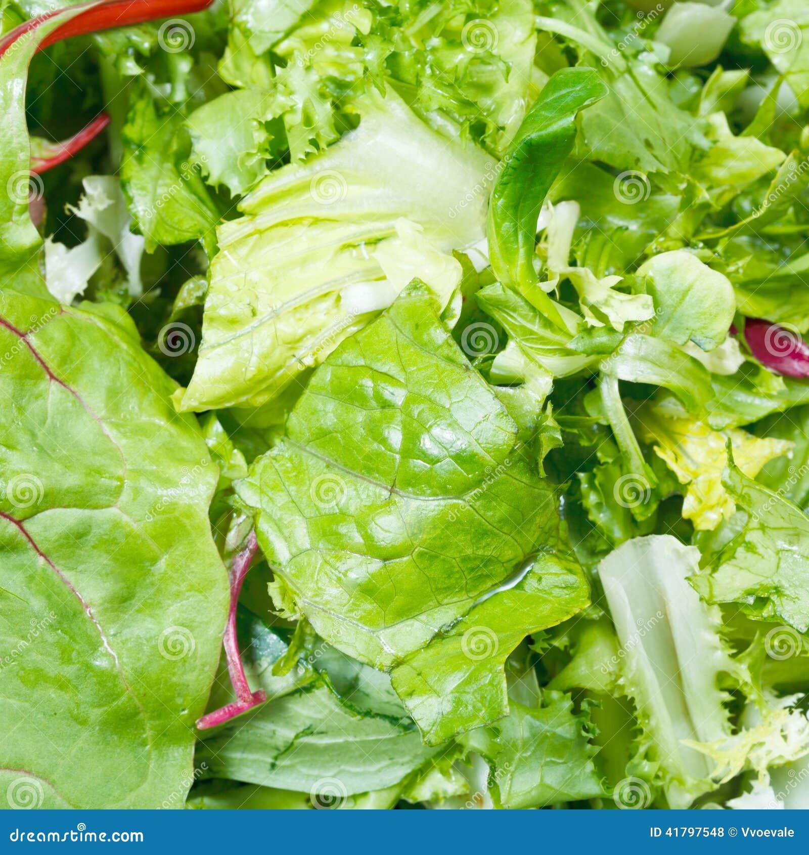 Foglie verdi nel preparato italiano fresco della lattuga
