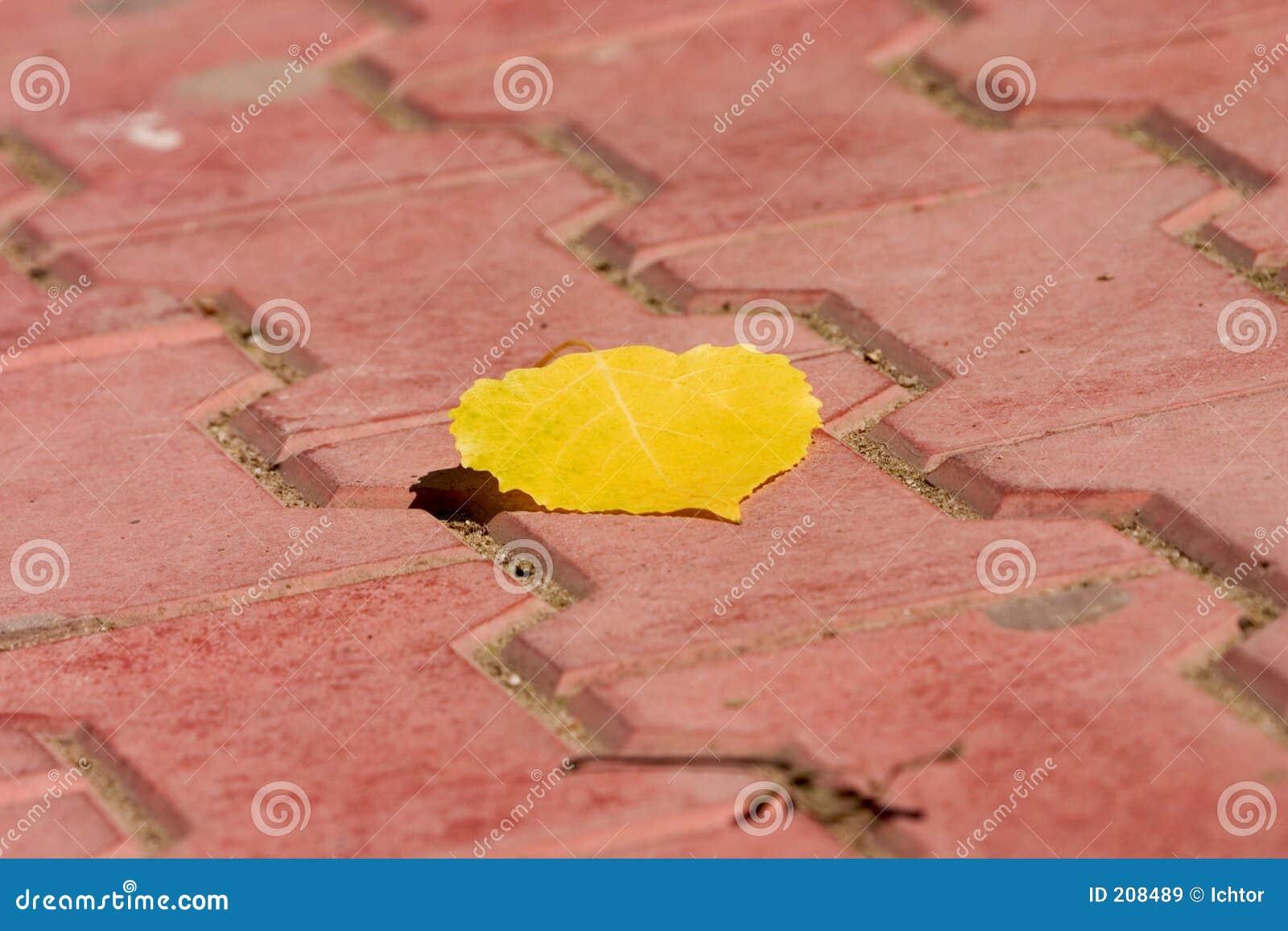 Foglio giallo