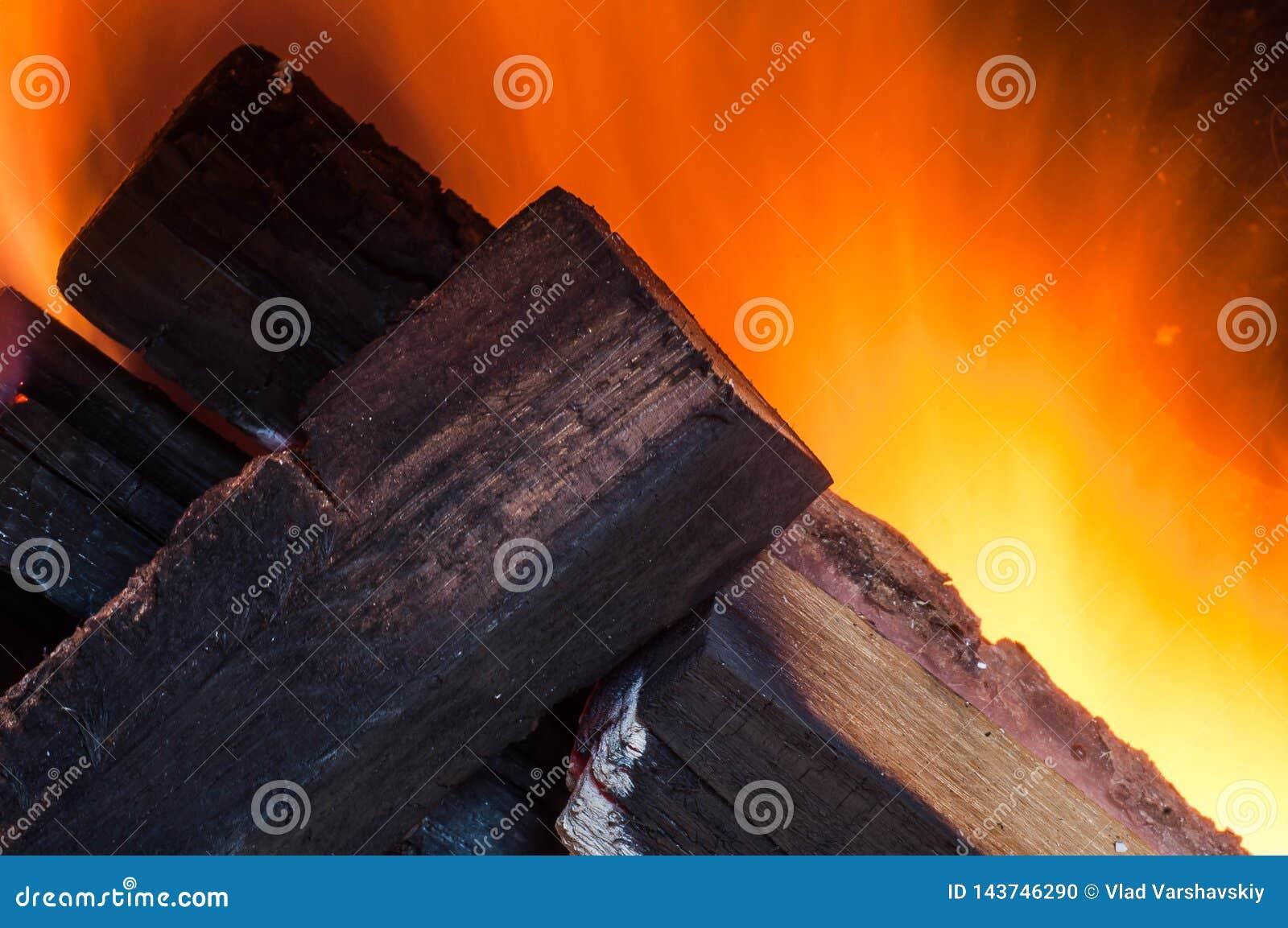 Fogo de queimadura, lenha do carvalho em um forno em casa compacto com boa tração para aquecer uma casa autonomamente de outro co