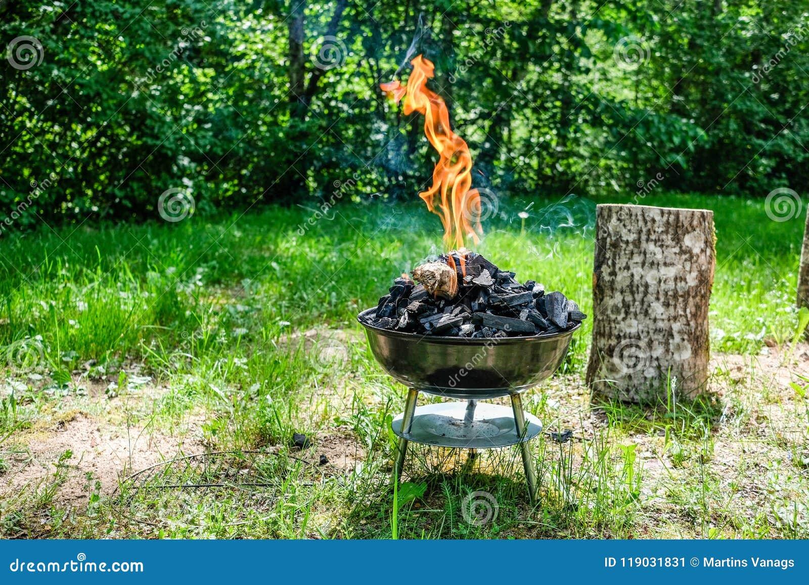 Fogo na grade do carvão vegetal do assado Alimento do churrasco em um tipo s do weber