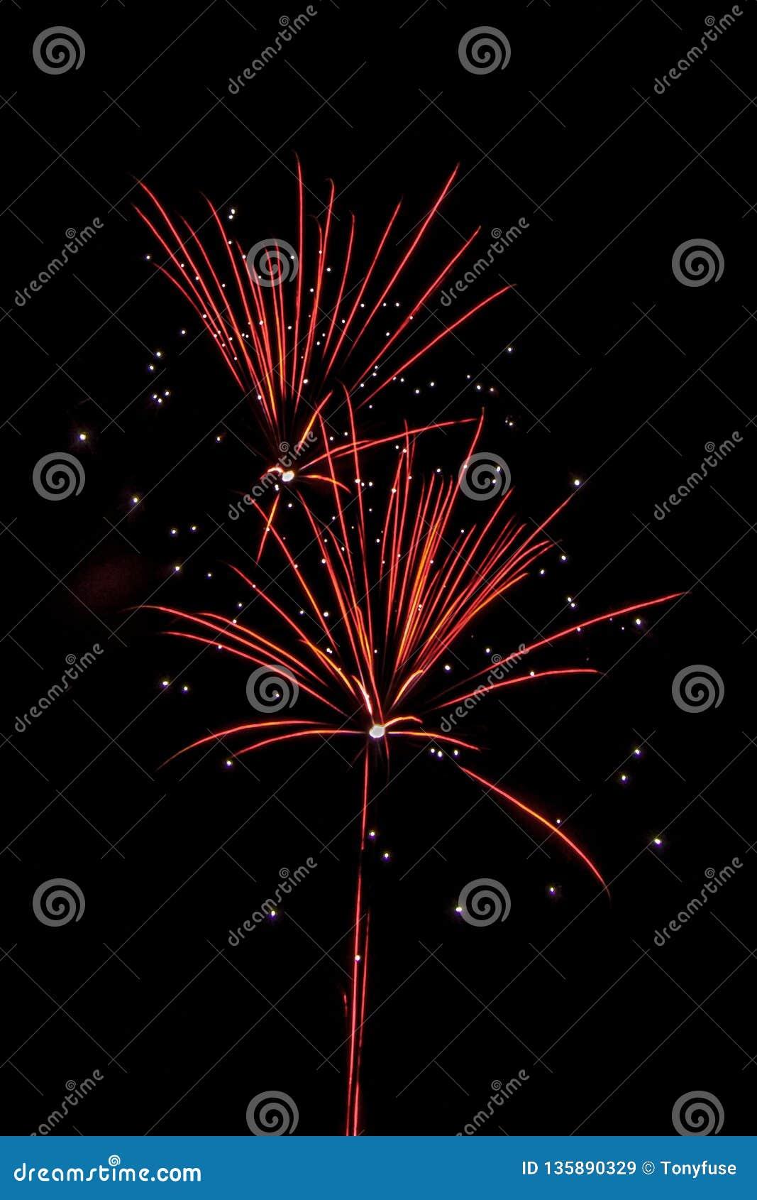Fogos de artifício festivos populosos