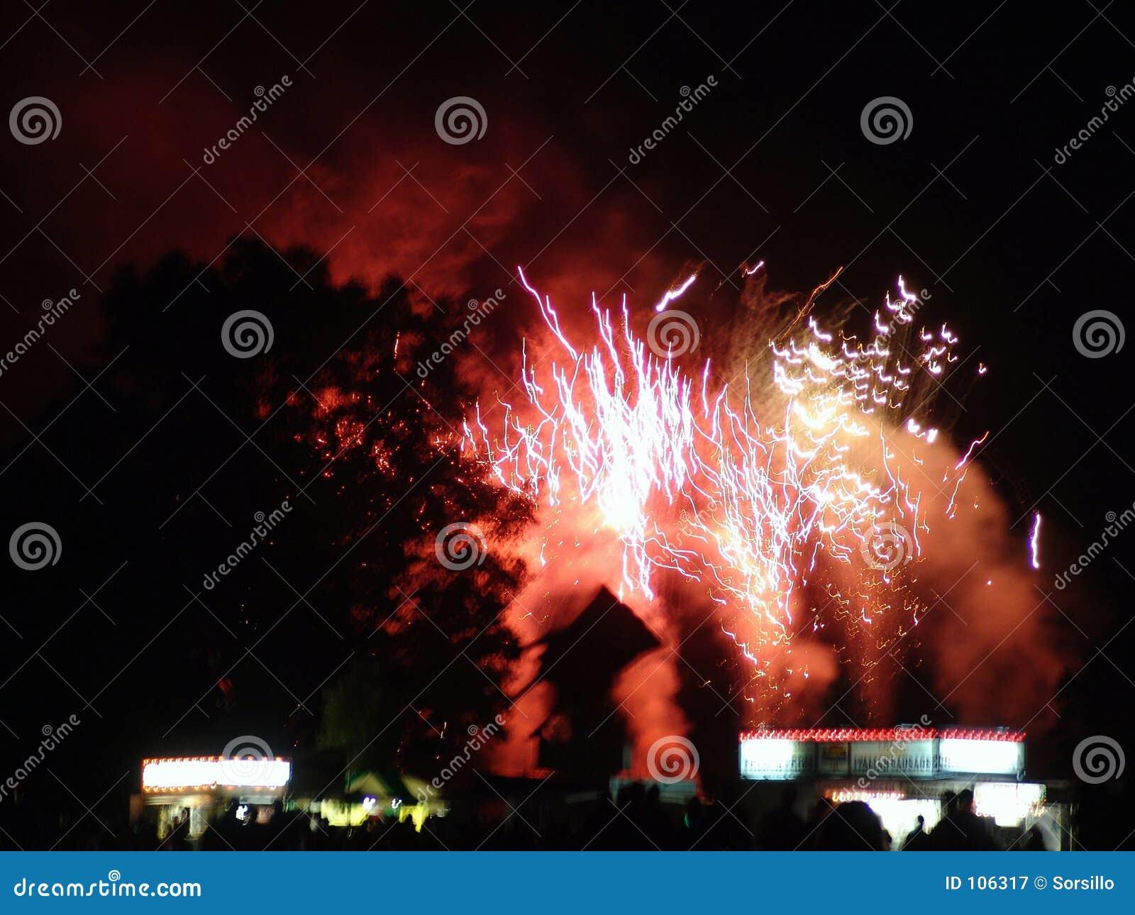 Fogos-de-artifício que explodem atrás das árvores