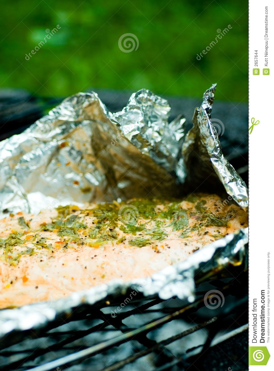Foil grilled salmon stock images image 2657644 for Tin foil fish