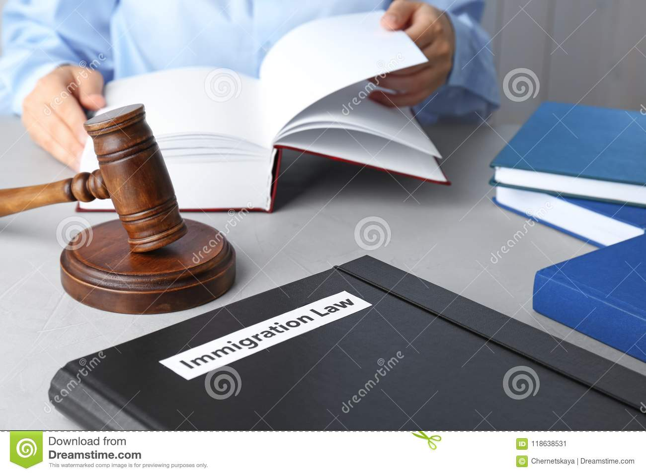 Folder with words IMMIGRATION LAW, gavel