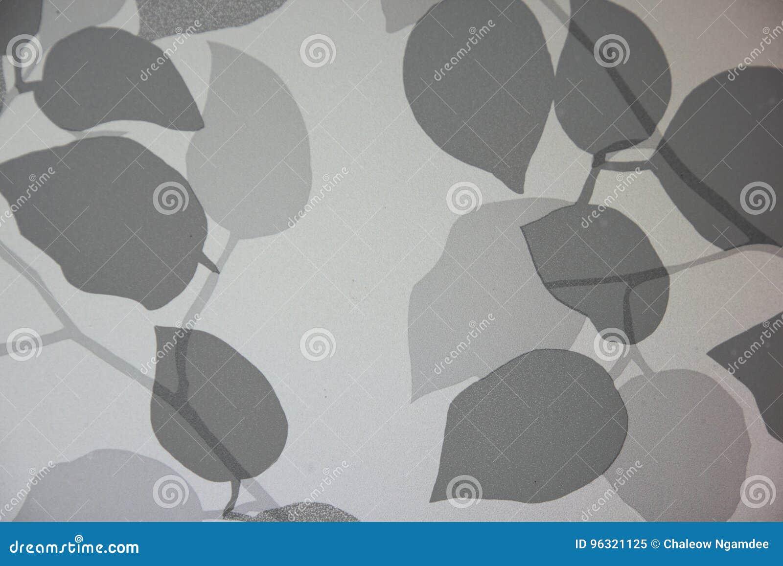 Folha da sombra