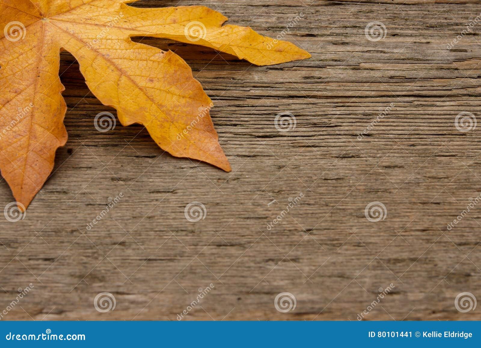 Folha de bordo dourada no fundo de madeira