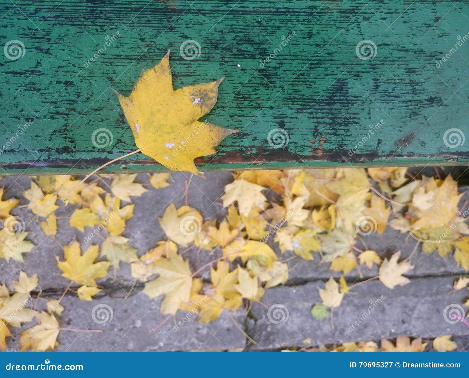 Folha de outubro