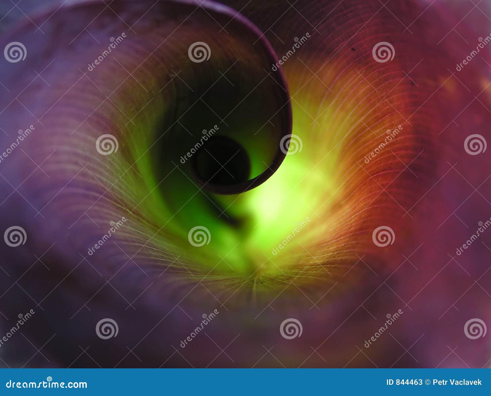 Folha espiral torcida