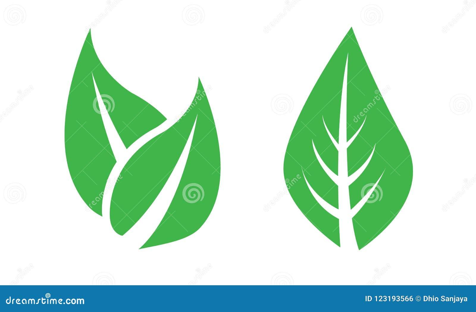 Folha, folhas, plantas, pinheiros, grama, logotipo, natureza, verde, grupo do ícone do vetor