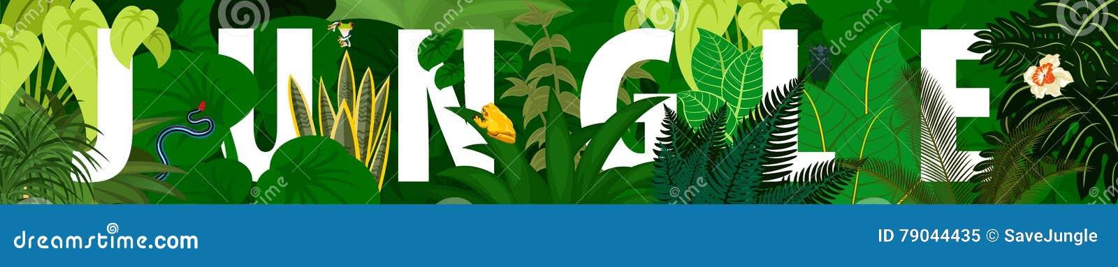 Folha tropical Fundo floral Bandeira da floresta úmida da selva do vetor