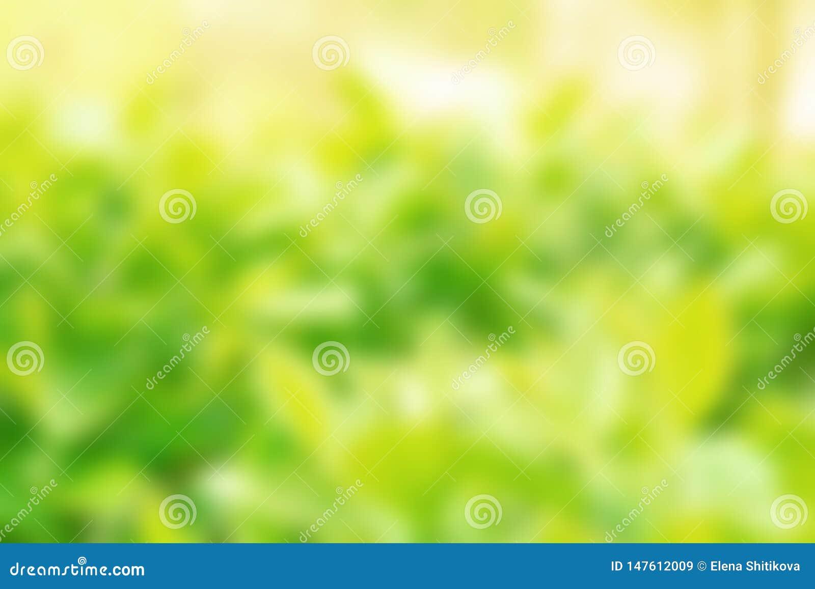 Folha verde com um dia de mola ensolarado Fundo borrado