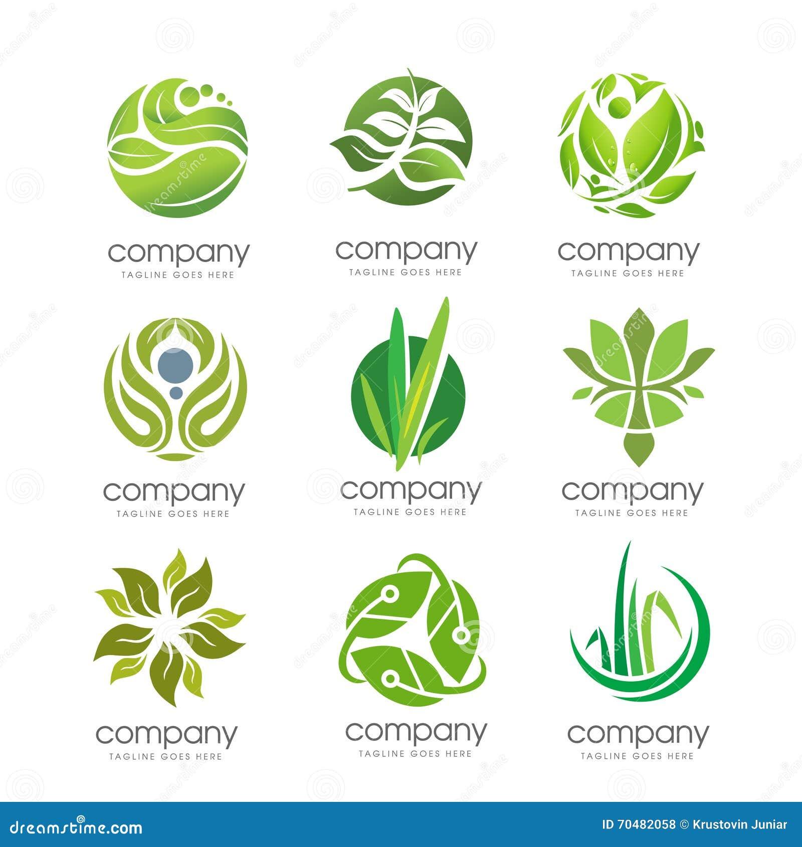 Folha verde e elemento incorporado do grupo do negócio natural