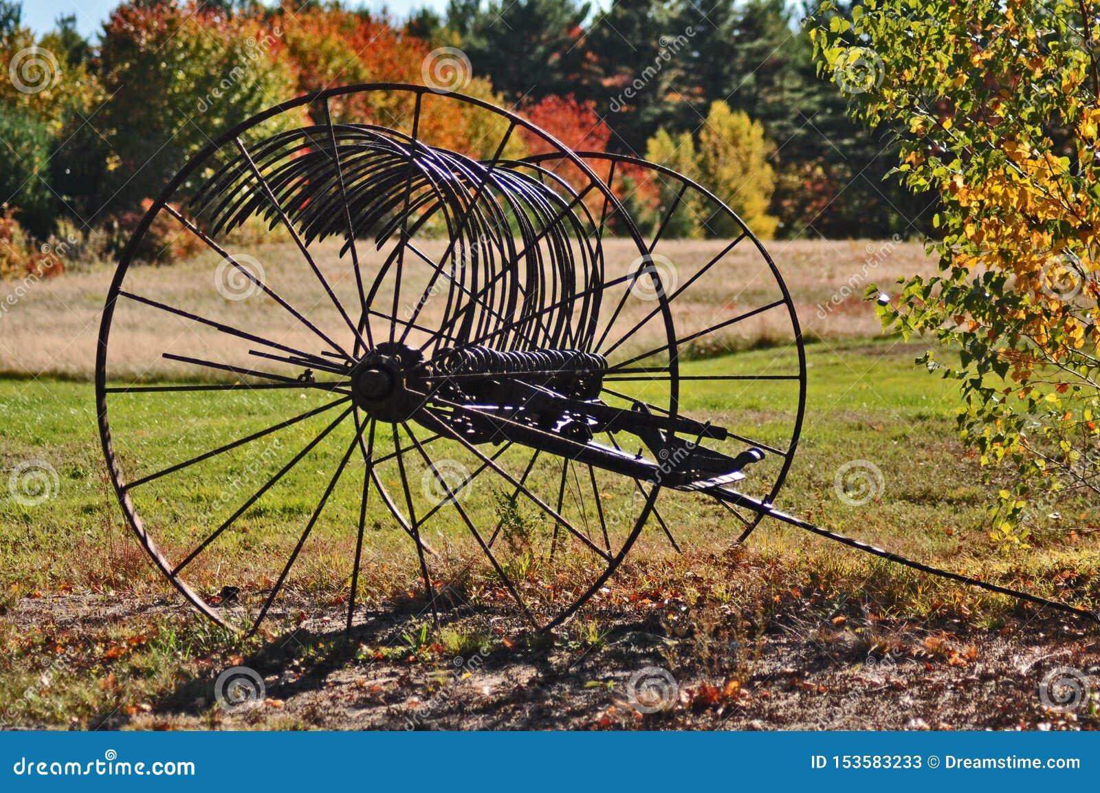 Folhagem de outono da roda de vagão