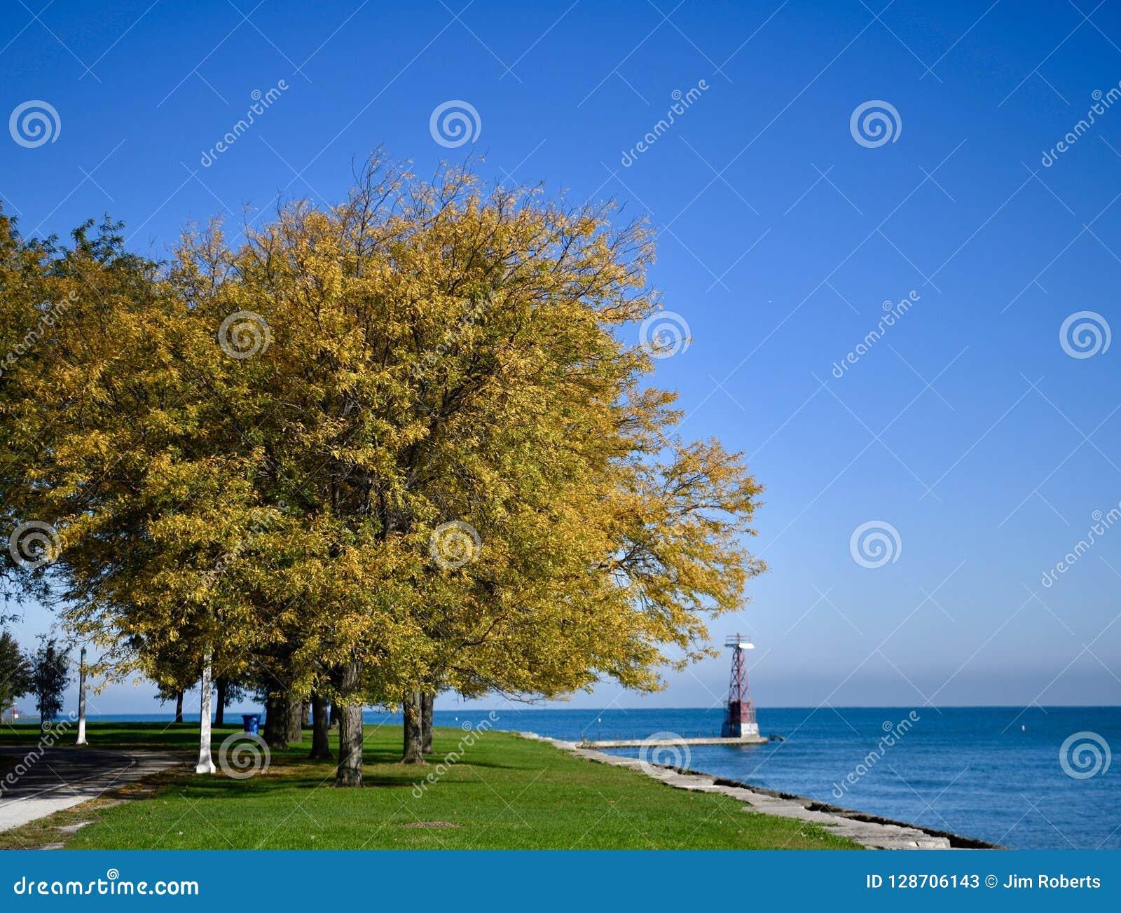 Folhagem de outono nas proximidades do lago