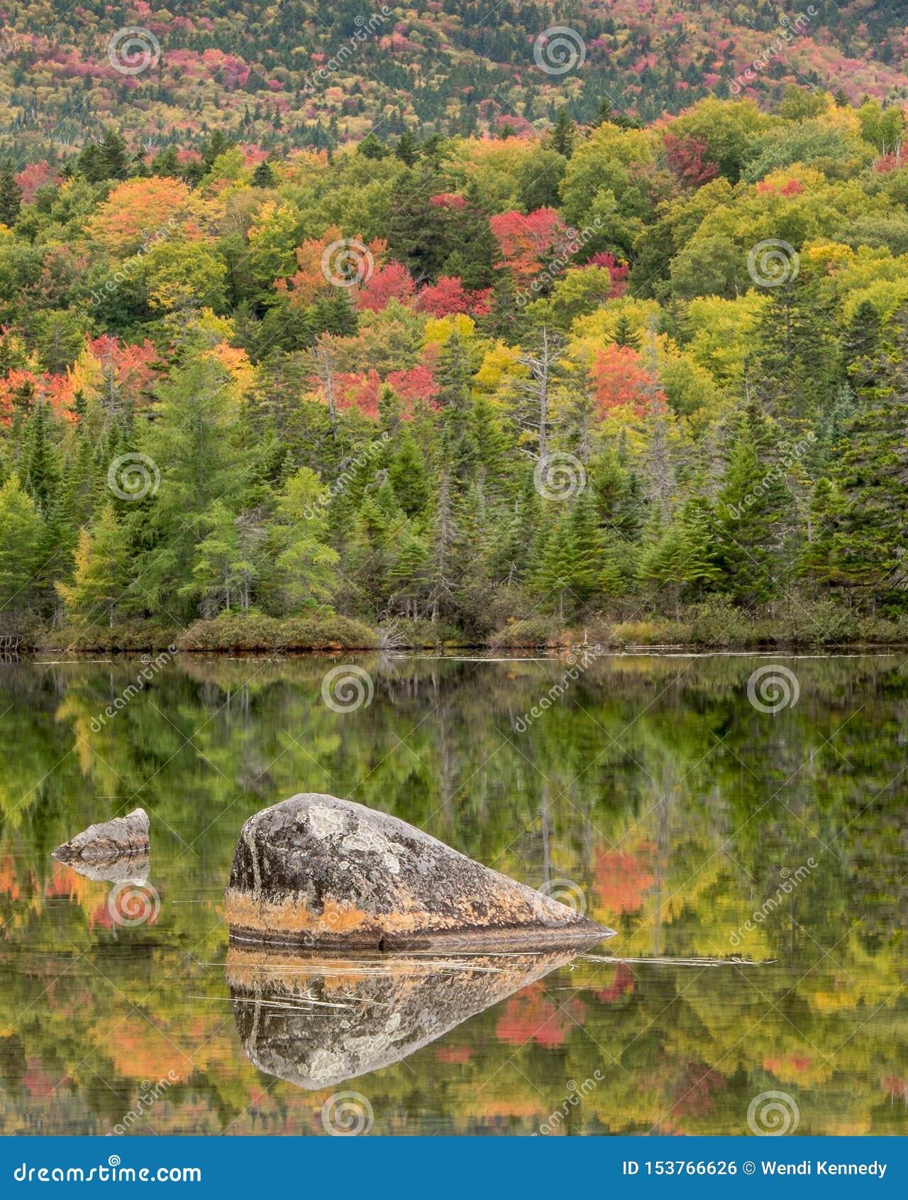 Folhagem de outono por um lago em Maine do norte
