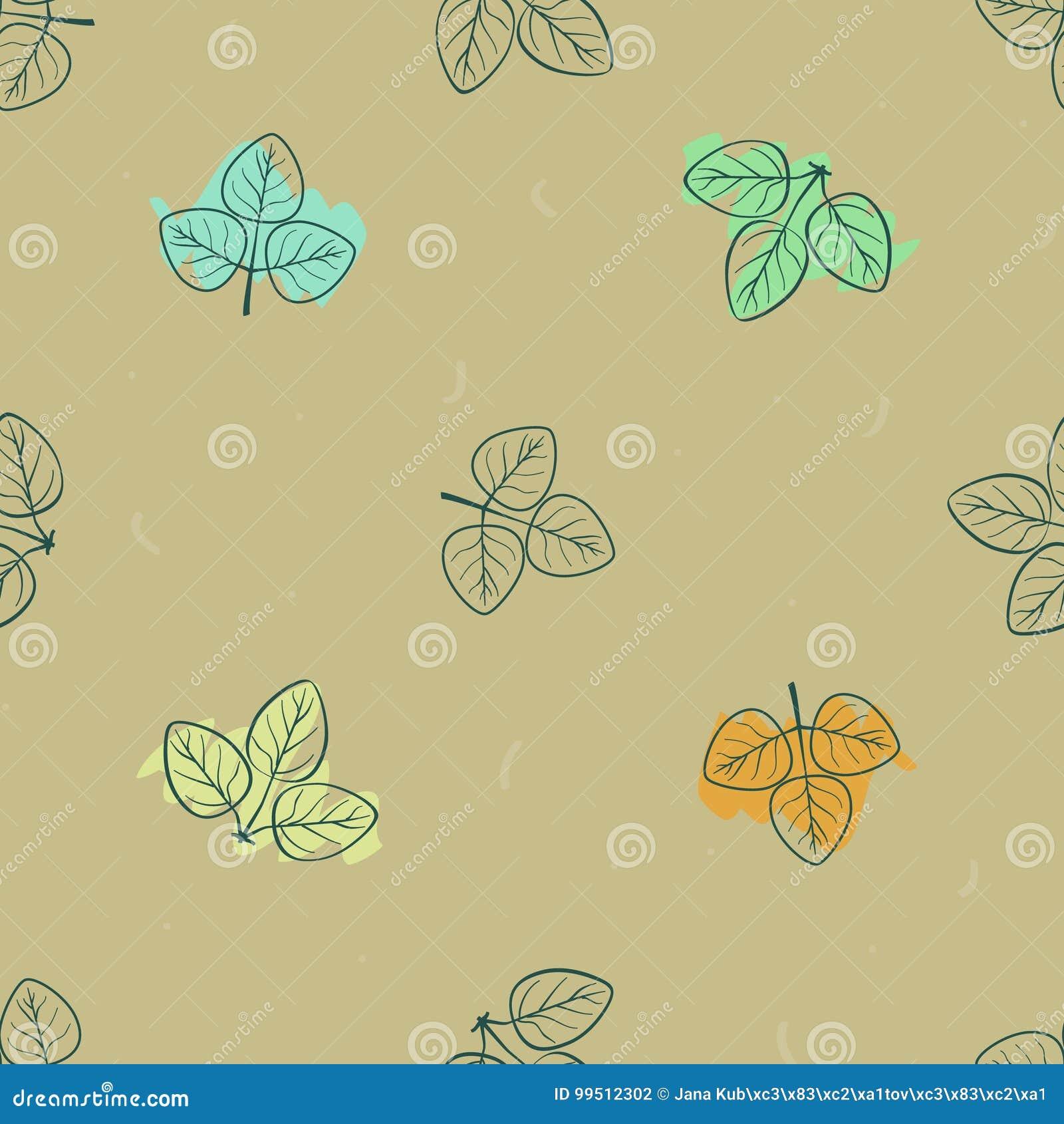 Folhas coloridas do outono