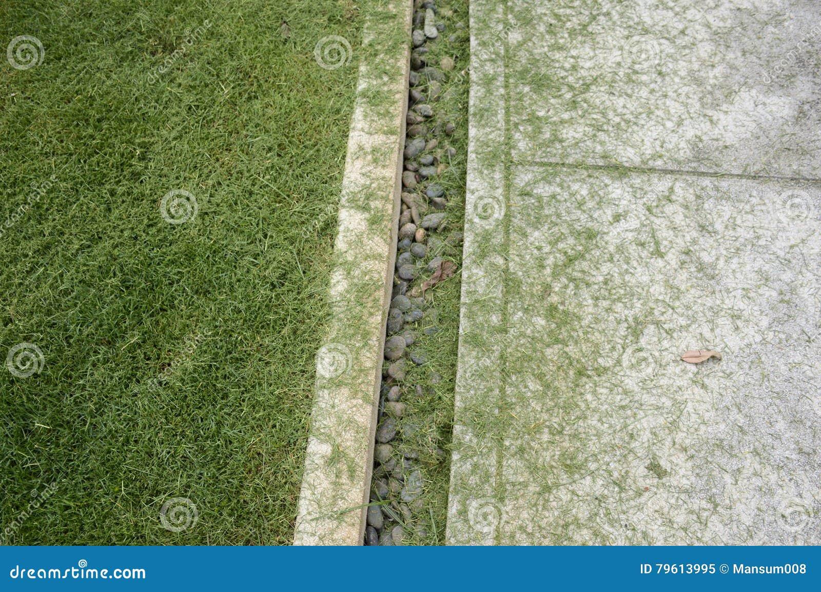 Folhas da grama no assoalho do cimento