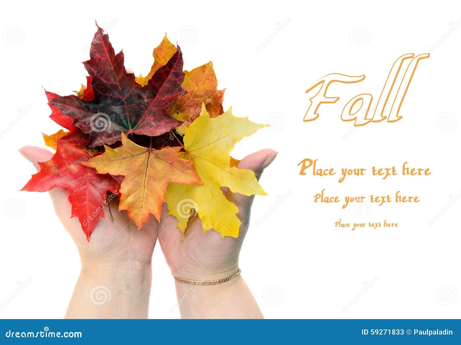 Folhas de outono da queda nas mãos das mulheres