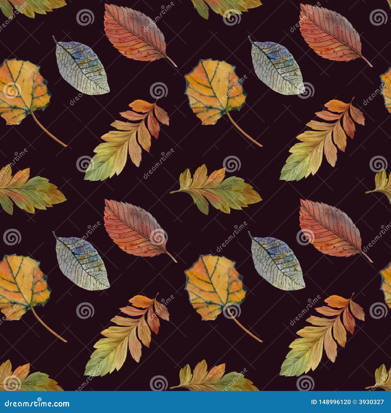 Folhas de outono elegantes para o projeto diferente da cor Teste padr?o sem emenda da aquarela das folhas coloridas