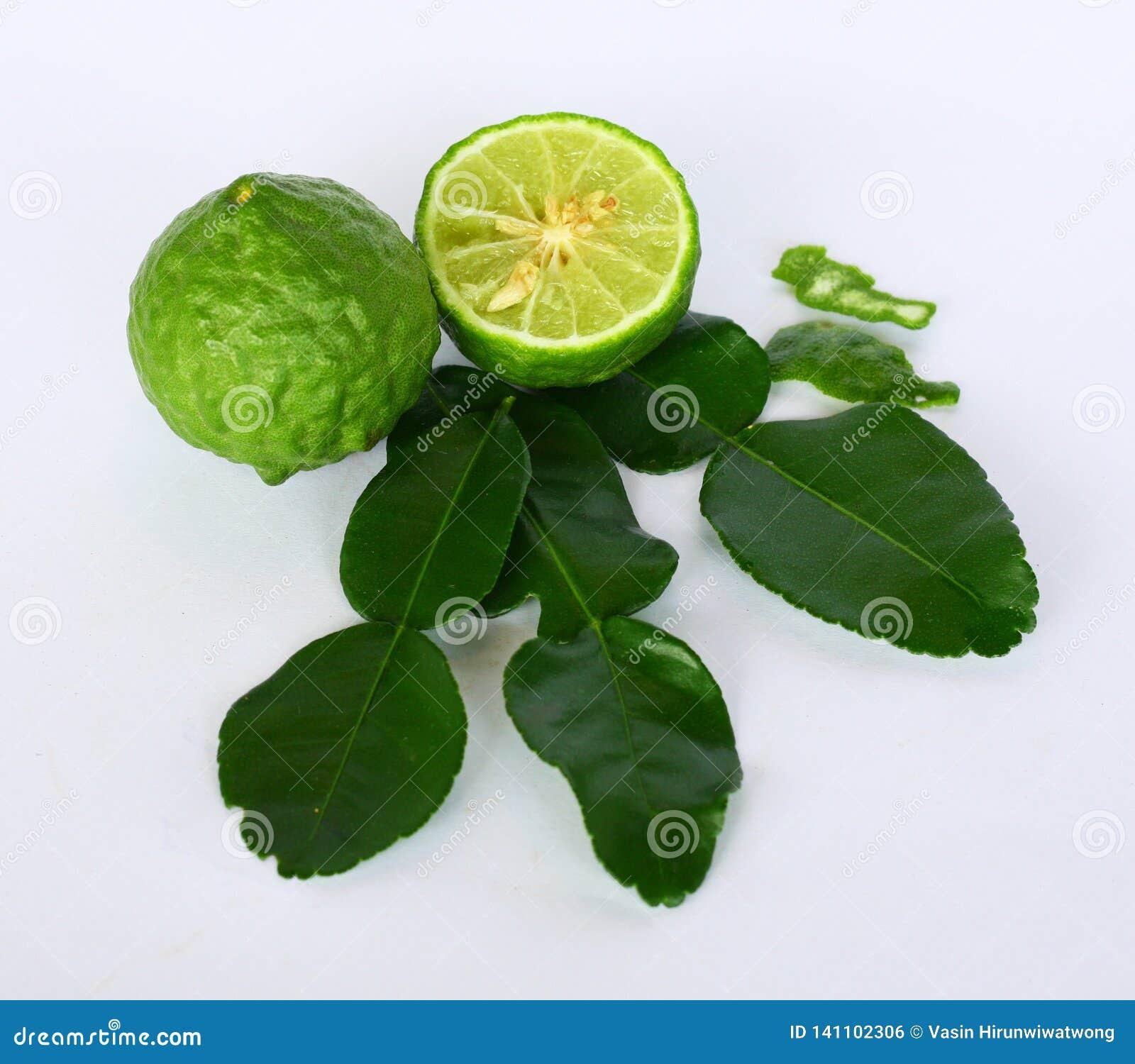Folhas do cal do Kaffir & fruto do cal do Kaffir| Makrut do Bai & makrut do olhar