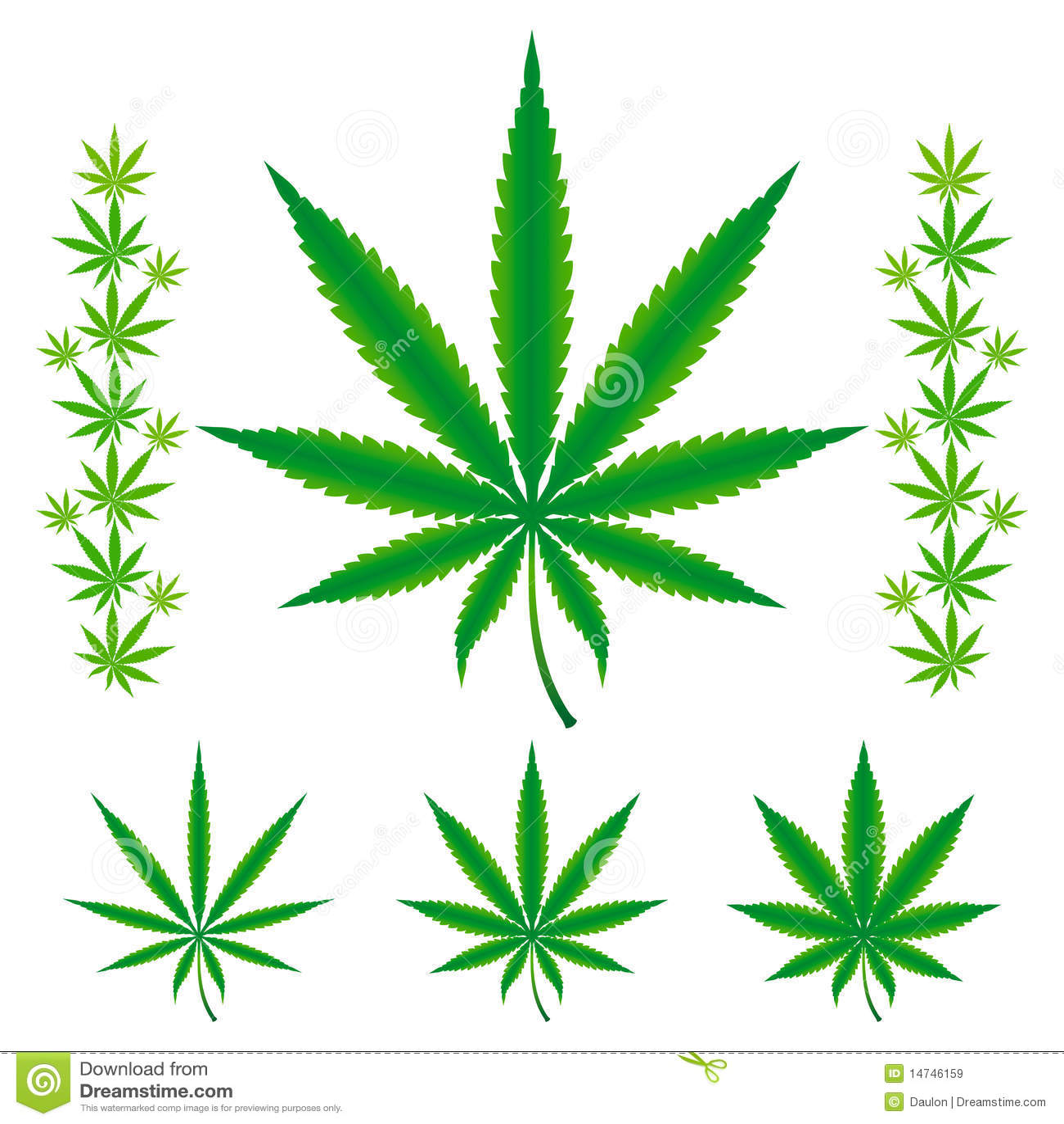 Folhas do cannabis/marijuana/cânhamo.