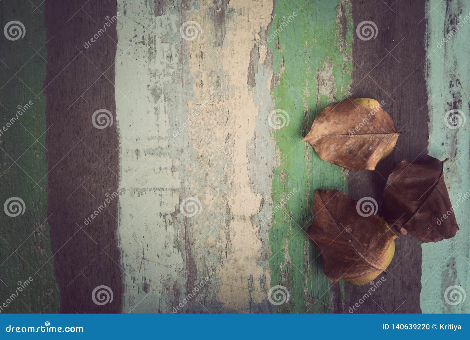 Folhas secas no fundo material de madeira para o papel de parede do vintage